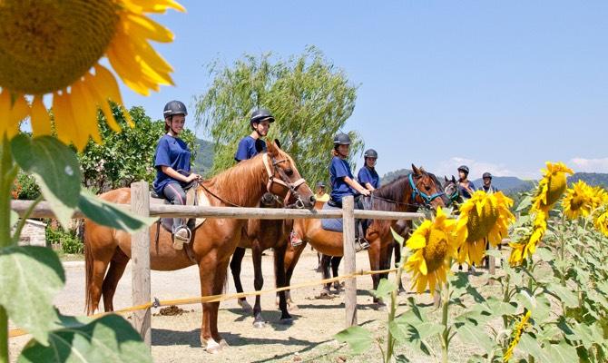 Colònies d'estiu amb equitació