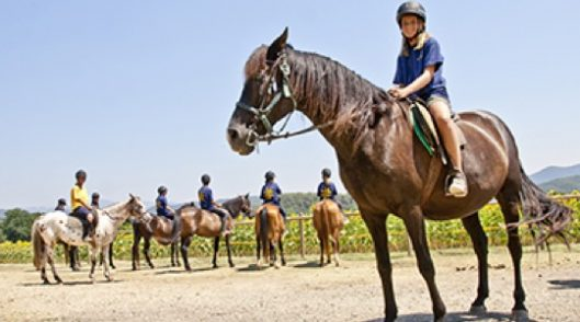 Colonias de verano Horses & Breath en Mieres